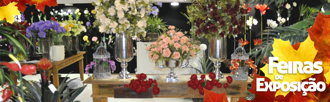 Feiras de Exposição Flor de Seda